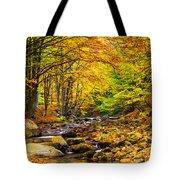 Autumn Landscape Tote Bag by Evgeni Dinev