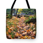 Autumn Path Tote Bag by Mike  Dawson