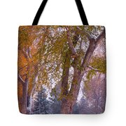 Autumn Snow Park Bench   Tote Bag by James BO  Insogna