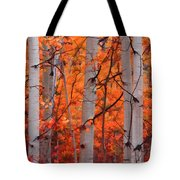 Autumn Splendor Tote Bag by Don Schwartz