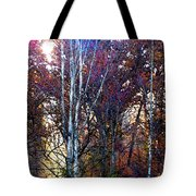 Autumn Sunlight Tote Bag by Jane Schnetlage