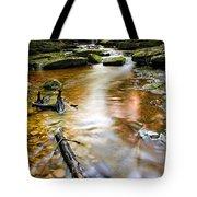 autumnal waterfall Tote Bag by Meirion Matthias