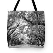 Avenue Of Oaks Charleston South Carolina Tote Bag by Stephanie McDowell