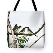 Baby Birds - Eastern Kingbird Family Tote Bag by Christina Rollo