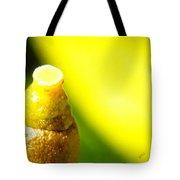 Baby Lemon On Tree Tote Bag by Ben and Raisa Gertsberg