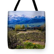 Balsamroot Flowers And North Cascade Mountains Tote Bag by Omaste Witkowski