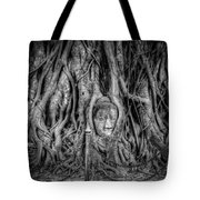 Banyan Tree Tote Bag by Adrian Evans
