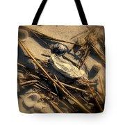 Beach Still Life Tote Bag by Susanne Van Hulst