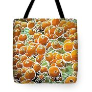 Beautiful Marine Plants 3 Tote Bag by Lanjee Chee