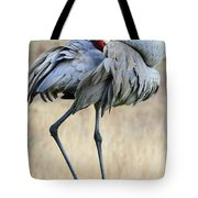 Beautiful Preening Sandhill Crane Tote Bag by Carol Groenen
