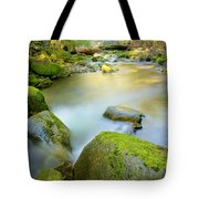 Beauty Creek Tote Bag by Idaho Scenic Images Linda Lantzy