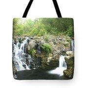 Beauty Falls Tote Bag by Marty Koch