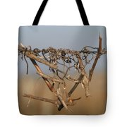 Beauty is Everywhere Tote Bag by Dagmar Ceki