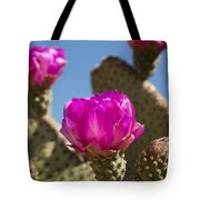 Beavertail Cactus Blossom 2 Tote Bag by Kelley King