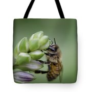 Busy Bee Tote Bag by Andrea Silies