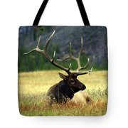 Big Bull 2 Tote Bag by Marty Koch