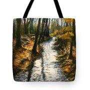 Bike Path Brook Tote Bag by Jack Skinner