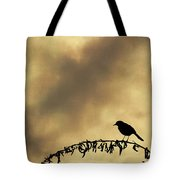 Bird On Branch Montage Tote Bag by Dave Gordon
