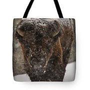 Bison Buffalo Wyoming Yellowstone Tote Bag by Mark Duffy