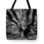 Black Forest Tote Bag by David Lee Thompson