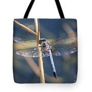 Blue Dragonfly Tote Bag by Carol Groenen