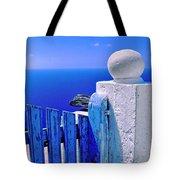 Blue gate Tote Bag by Silvia Ganora