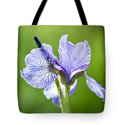 Blue Iris Germanica Tote Bag by Frank Tschakert
