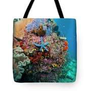 Blue Starfish On Coral Reef, Raja Tote Bag by Beverly Factor