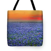 Bluebonnet Sunset Vista - Texas landscape Tote Bag by Jon Holiday