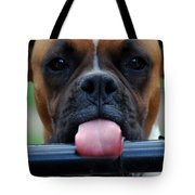 Boxer Briefs Number One Tote Bag by Skip Willits