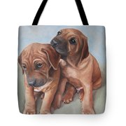 Brothers Tote Bag by Jindra Noewi