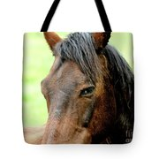 Brown Horse With Sultry Eye . R5907 Tote Bag by Wingsdomain Art and Photography
