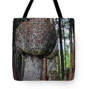 Burly Phantoms - Spruce Burls Beach One Olympic National Park WA Tote Bag by Christine Till