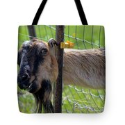 Busted Tote Bag by Mike  Dawson