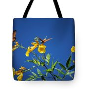 Butterfly In The Sonoran Desert Musuem Tote Bag by Donna Greene