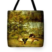 By The Little Tree - Lake Carasaljo Tote Bag by Angie Tirado