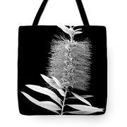 Callistemon Beauty 3 Tote Bag by Kelley King