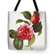 Camellia, 1833 Tote Bag by Granger