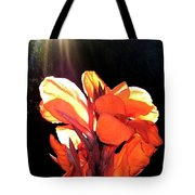 Canna Lily Tote Bag by Will Borden