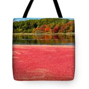 Cape Cod Cranberry Bog Tote Bag by Matt Suess