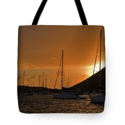 Caribbean Dawn Tote Bag by Louise Heusinkveld