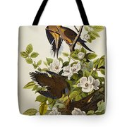 Carolina Turtledove Tote Bag by John James Audubon