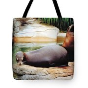 Carry That Weight Tote Bag by Jan Amiss Photography
