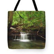 Cascade Happy Trail Tote Bag by Michael Peychich