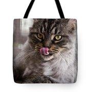 Cat Of Nicole 2 Tote Bag by Heiko Koehrer-Wagner