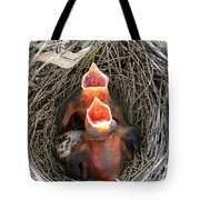 Cavernous Cardinals Tote Bag by Al Powell Photography USA