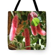 Chenille Caterpillar Plant Tote Bag by Corey Ford