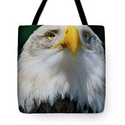 Chin Up Tote Bag by Laddie Halupa