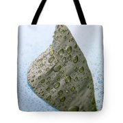 Citrus Leaf Tote Bag by Frank Tschakert