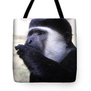 Colobus Monkey Tote Bag by Aidan Moran